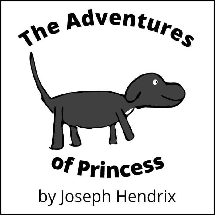 The Adventures of Princess cover image